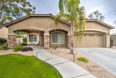 Queen Creek Single Family Home For Sale: 21931 S 218th Street