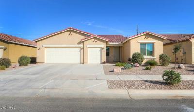 Casa Grande Single Family Home For Sale: 306 N Agua Fria Lane