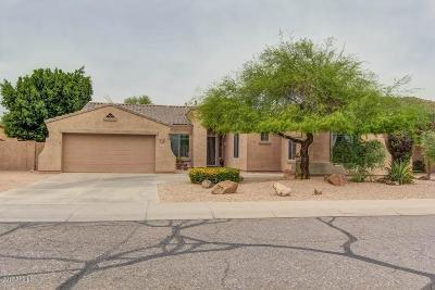 Phoenix Single Family Home For Sale: 4212 W Reddie Loop
