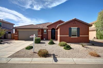 Maricopa Single Family Home For Sale: 18734 N Tanners Way