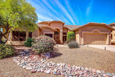 Gold Canyon Single Family Home For Sale: 4914 S Nighthawk Drive