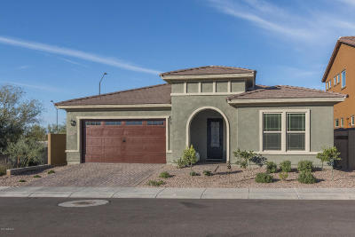 Phoenix Single Family Home For Sale: 27110 N 18th Lane