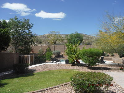 Phoenix Single Family Home For Sale: 14640 S 7th Place