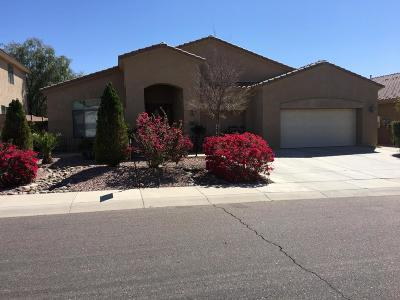 Phoenix Single Family Home For Sale: 1925 W Spur Drive