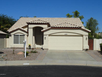 Gilbert Single Family Home For Sale: 1680 W Pinon Court