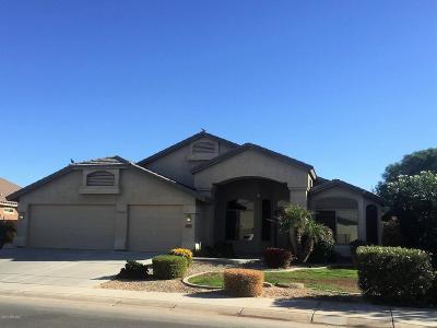 Maricopa Single Family Home For Sale: 20607 N Danielle Avenue