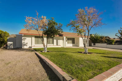 Phoenix Single Family Home For Sale: 11457 N 25th Avenue