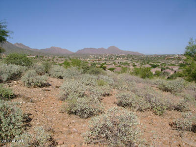 Fountain Hills Residential Lots & Land For Sale: 14034 N Sunflower Drive
