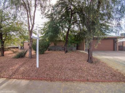 Phoenix Single Family Home For Sale: 3625 W Saint Moritz Lane