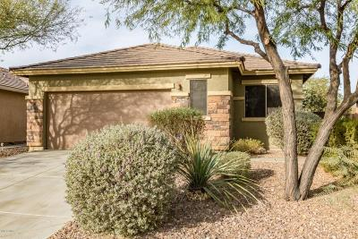 Anthem Single Family Home For Sale: 1628 W Owens Way