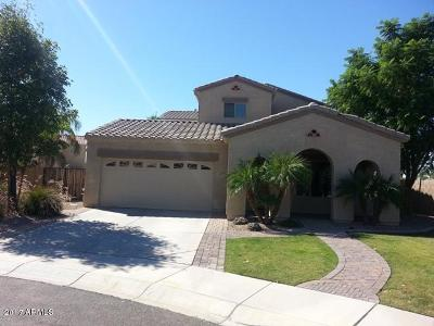 Litchfield Park Rental For Rent: 13229 W Amelia Avenue