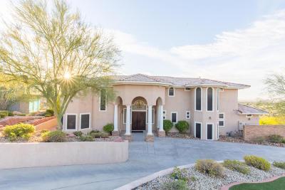 Phoenix Single Family Home For Sale: 1617 E Sharon Drive