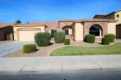 Chandler Single Family Home For Sale: 3160 E Powell Place