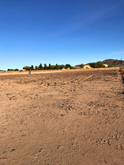 Phoenix Residential Lots & Land For Sale: 1.09 Acre W Tanya Road
