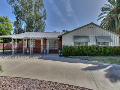 Phoenix Single Family Home For Sale: 702 E Winter Drive