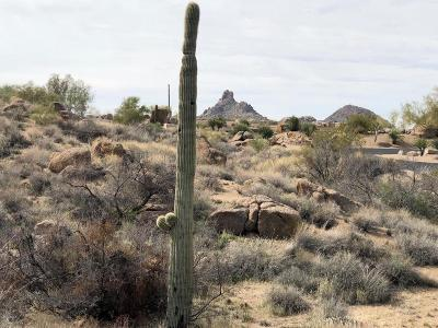 Scottsdale Residential Lots & Land For Sale: 10247 E Troon North Drive