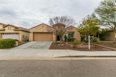 Phoenix Single Family Home For Sale: 5222 W Buckskin Trail