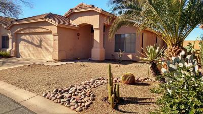 San Tan Valley Single Family Home For Sale: 31255 N Claridge Circle