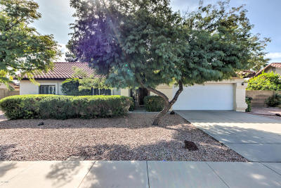 Tempe Single Family Home For Sale: 937 E Knight Lane