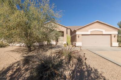 Phoenix Single Family Home For Sale: 712 E Blue Eagle Lane