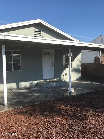 Phoenix Single Family Home For Sale: 1138 W Ironwood Drive