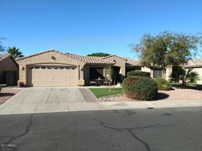 Single Family Home For Sale: 14740 N 150th Lane