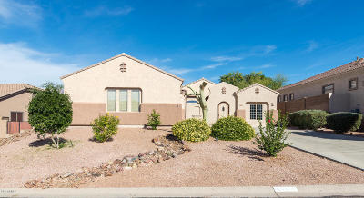 Gold Canyon Single Family Home For Sale: 4391 S Primrose Drive