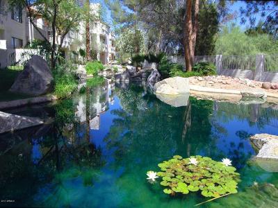 Scottsdale Apartment For Sale: 10080 E Mountainview Lake Drive #A202