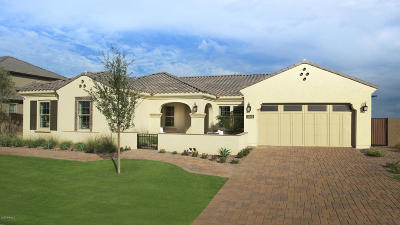 Chandler Single Family Home For Sale: 3490 E Aquarius Place