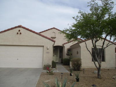 Goodyear Rental For Rent: 17522 W Desert Sage Drive