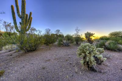 Scottsdale Residential Lots & Land For Sale: 28773 N 107th Street