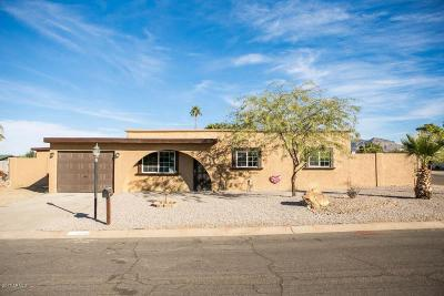 Mesa Single Family Home For Sale: 9540 E Ensenada Street
