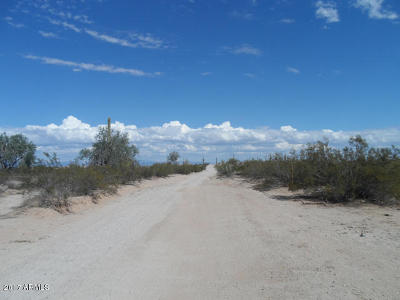 San Tan Valley Residential Lots & Land For Sale: W Silverdale Road