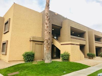 Phoenix Apartment For Sale: 3535 W Tierra Buena Lane #277