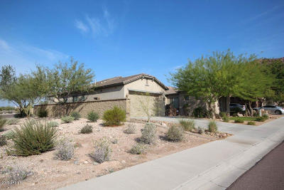 Single Family Home For Sale: 27602 N 89th Lane