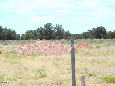 Williams AZ Residential Lots & Land For Sale: $18,999