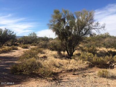 Scottsdale Residential Lots & Land For Sale: 15015 E Desert Vista Court