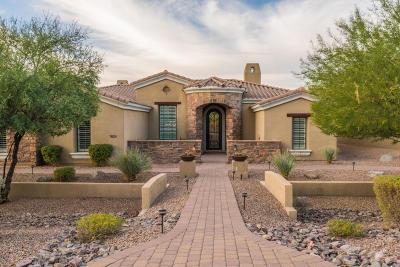Mesa Single Family Home For Sale: 7828 E Riverdale Circle