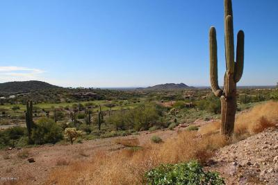 Gold Canyon Residential Lots & Land For Sale: 9331 E Skyline Trail