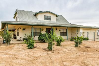 Desert Hills Single Family Home For Sale: 411 W Galvin Street