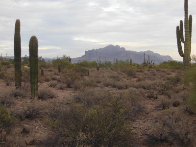 Apache Junction Residential Lots & Land For Sale: N Meridian Drive