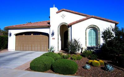 San Tan Valley Single Family Home For Sale: 37371 N Wild Barley Path