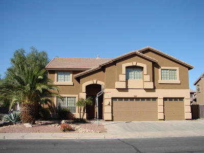 Chandler Single Family Home For Sale: 2684 E Birchwood Place