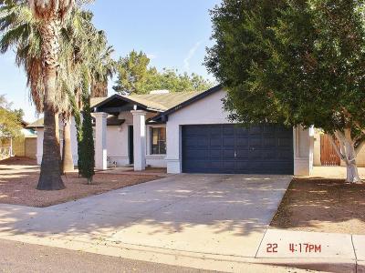 Mesa Single Family Home For Sale: 6445 E Ingram Street