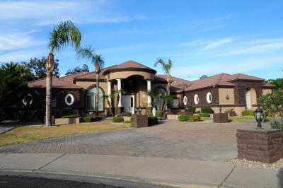 Mesa Single Family Home For Sale: 3848 E Ivyglen Circle