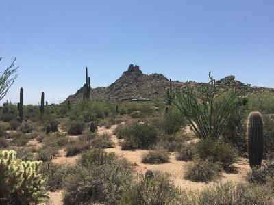 Scottsdale Residential Lots & Land For Sale: 27415 N 103rd Street