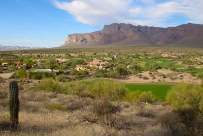 Gold Canyon Residential Lots & Land For Sale: 8980 E Quartz Mountain Drive
