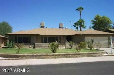 Glendale Single Family Home For Sale: 8431 N 51st Drive