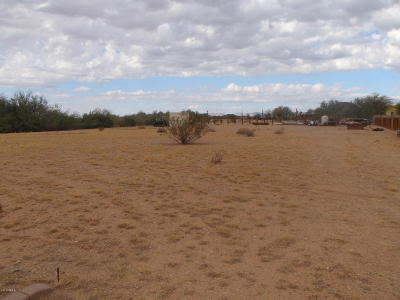 Residential Lots & Land For Sale: 26772 N 155th Avenue
