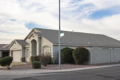 Mesa Single Family Home For Sale: 8762 E Posada Avenue